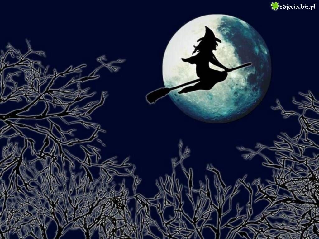 Halloween,baba jaga na miotle