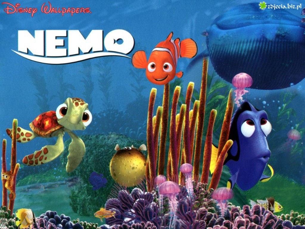 Zdjecie Gdzie Jest Nemo Bohaterowie