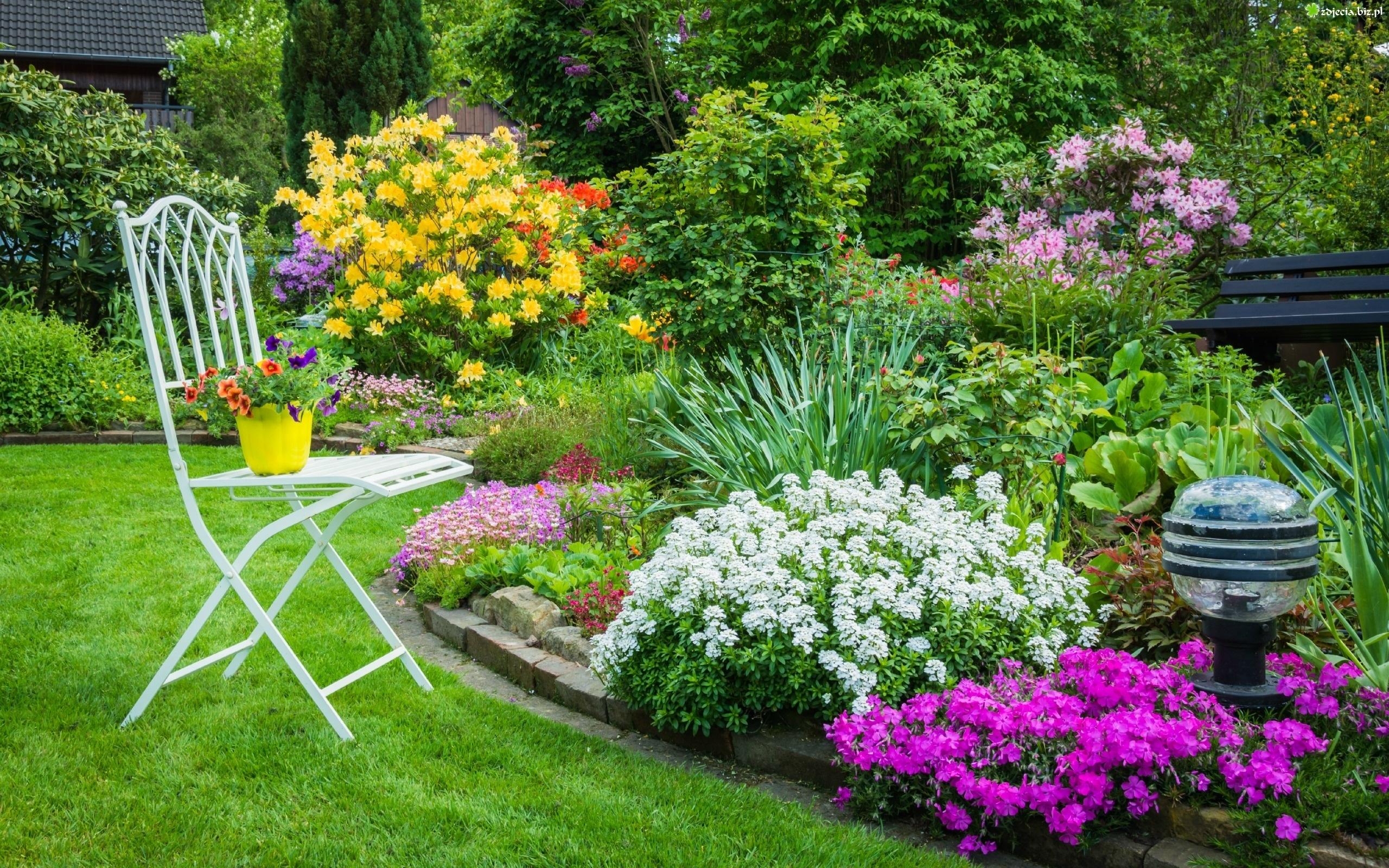 Zdjęcie Ogród, Kwietniki, Kwitnące, Krzewy, Drzewa, Ławka, Wiosna