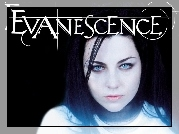 Amy Lee, Evanescence, Usta