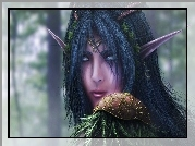 World Of Warcraft, Nocny Elf
