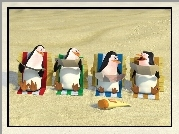 Pingwiny Z Madagaskaru, The Penguins of Madagascar, Pingwiny, Plaża