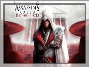 Assassins Creed, Brotherhood