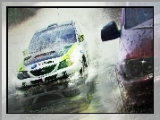 Colin McRae: DiRT 2, Woda