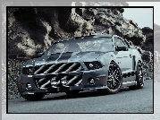 GT500, Ford Mustang