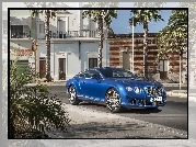 Niebieski, Bentley, Continental, GT Speed, Dom, Palmy