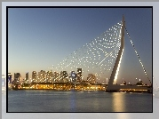 Most, Rotterdam, Holandia, Erasmus Bridge