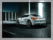 Porsche Cayman 981 TechArt, 2013