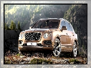 Bentley Bentayga, Przodem